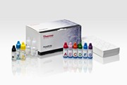 PathoDxtra Strep grouping kit(DR0700M) par Oxoïd, groupe Thermo Fischer Scientific